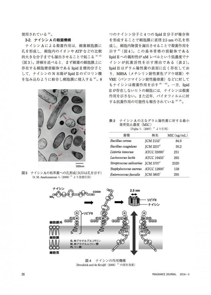 飲み込んでも安全な乳酸菌抗菌ペプチドの効果と臨床応用3